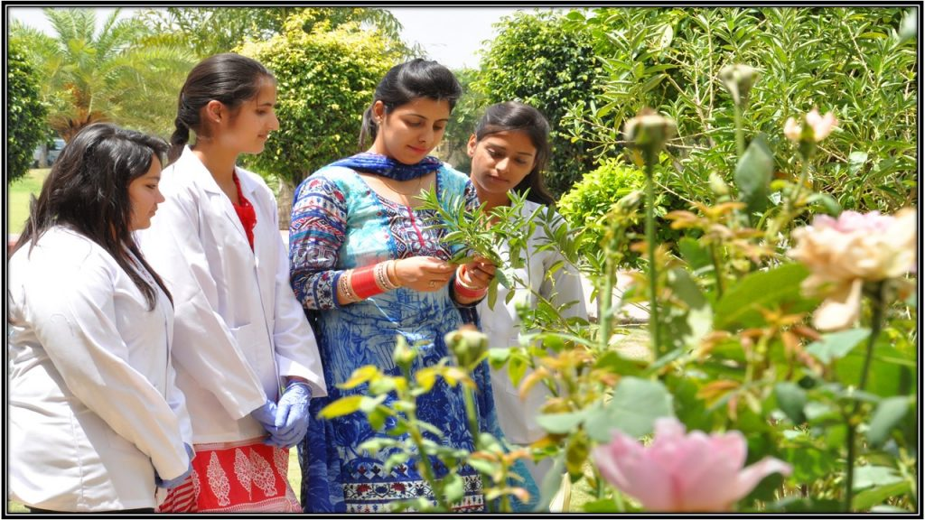 B Sc  Agriculture - Global Institutes Top & Best Engineering